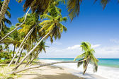Sauteurs Bay, Grenada — Stock Photo