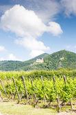 Chateau de saint-ulrich elzas — Stockfoto