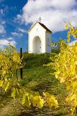 Chapel near Hnanice, Znojmo Region, Czech Republic — Stock Photo