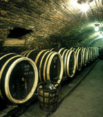 Wine cellar, Czech Republic — Stock Photo