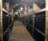 Wine archive, Czech Republic — Stock Photo