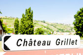 Chateau Grillet, Rhone-Alpes, France — Stock Photo