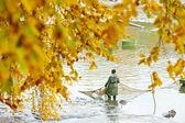Harvesting pond, Czech Republic — Stock Photo