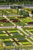 Villandry Castle's garde — Stock Photo