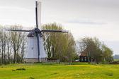 Moulin à vent près d'aldtsjerk, frise, pays-bas — Photo