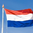 The Netherlands flag — Stock Photo #3778060