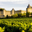 Carcassonne, Languedoc-Roussillon, France — Stockfoto #3778223