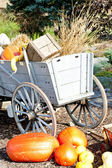 Still life of pumpkins with a cart — Stockfoto