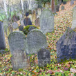 Jewish Cemetery, Trebic, Czech Republic — Stock Photo #3834771