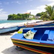 Stock Photo: Sauteurs Bay, Grenada