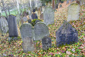 Jewish Cemetery, Trebic, Czech Republic — Stock Photo