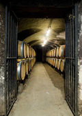 Vinný sklep v burgundsku — Stock fotografie