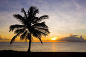Sunset over Caribbean Sea, Barbados — Stock Photo