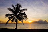 Sunset over Caribbean Sea, Barbados — Stock Photo