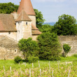 Chateau de Nobles, Burgundy, France — Stock Photo #3942283
