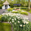 Keukenhof Gardens — Stock Photo #3949893