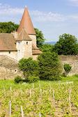 Chateau de Nobles, Burgundy, France — Stock Photo