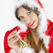 SantClaus — Stock Photo #3950389