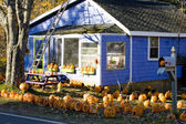Decorated house for Halloween, Maine, USA — Stock Photo