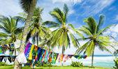 Barbados, Caribbean — Stock Photo