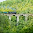 Zampach viaduct — Stock Photo #4064541