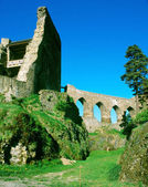 Ruins of Velhartice castle — Stock Photo