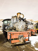 Stem locomotives — Stock Photo