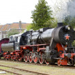 Steam train — Stock Photo #4167070