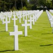 Stock Photo: American Military Cemetery, Normandy