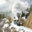 Durango and Silverton Narrow Gauge Railroad — Stock fotografie