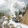 durango and silverton narrow gauge railroad — Stock Photo
