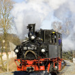 Steam locomotive, Germany - Stock Photo