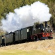 Stock Photo: Steam train, Germany