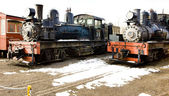 Steam locomotives — Stock Photo