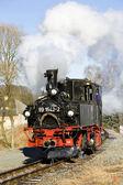 Steam locomotive, Germany — Stock Photo