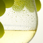 White wine and grape — Stock Photo #4204927