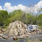 Pila de carbón, pinar del r — Foto de Stock