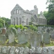 Ruins of Grey Abbey — Stock Photo