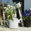 Watering can — Stock Photo #4228367