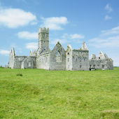 Ross Errilly Priory — Stock Photo
