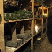 Vin Arkiv — Stockfoto