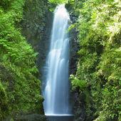 Cranny Falls — Stock Photo