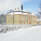 Dirna Castle — Stock Photo