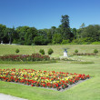 Powerscourt Gardens — Foto de stock #4264713