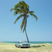 Old car, Cuba — Photo