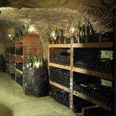Adega de vinho, república checa — Foto Stock