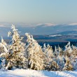 Orlicke Mountains in winter — Foto de Stock