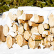 Logs — Stock Photo #4291803