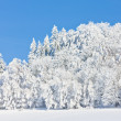 Jeseniky Mountains in winter — Foto Stock