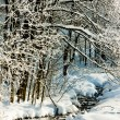 Jeseniky Mountains in winter — Stockfoto